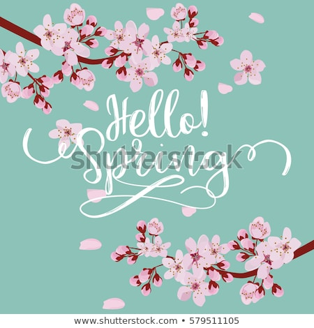 Advertisement about the spring sale on background with beautiful cherry blossom. Vector illustration Stock photo © ikopylov