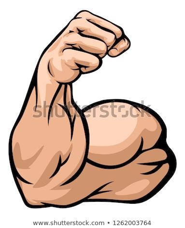 strong arm showing biceps muscle stock photo © krisdog