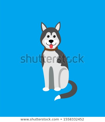 vektor · husky · kutya · karácsony · mikulás · kalap - stock fotó © robuart