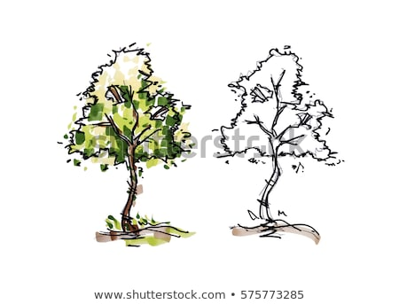 colored pencil style sketch of tree set stock photo © blue_daemon