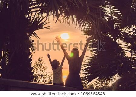 silhouetten · moeder · zoon · voldoen · zonsondergang · tropen - stockfoto © galitskaya