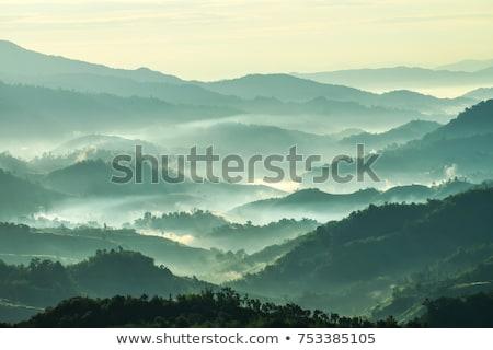 pôr · do · sol · silhueta · árvores · dramático · colorido · céu - foto stock © swatchandsoda