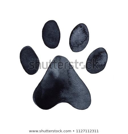 лапа · болван · икона · рисованной · черный · эскиз - Сток-фото © lemony