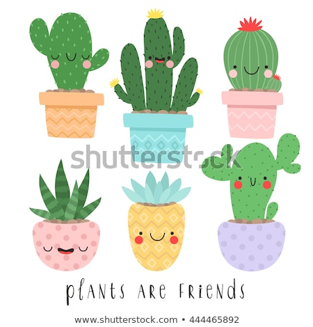 aranyos · kézzel · rajzolt · rajz · firka · kaktusz · szett - stock fotó © marish