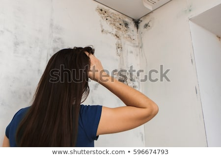 Uszkodzony sufit widoku starych Zdjęcia stock © AndreyPopov