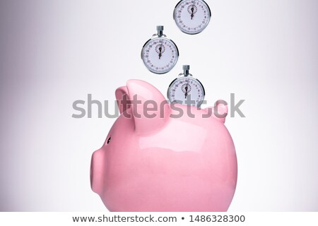 Piggy Bank With Stopwatch Against White Background Stock photo © AndreyPopov