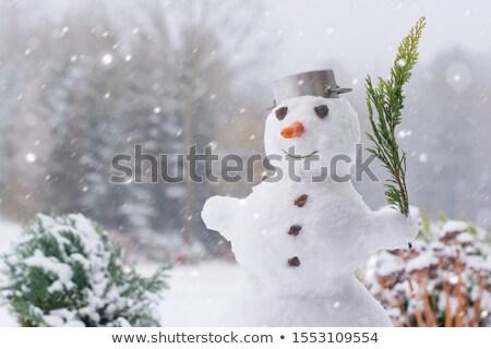 Snowman In Garden stock photo © monkey_business