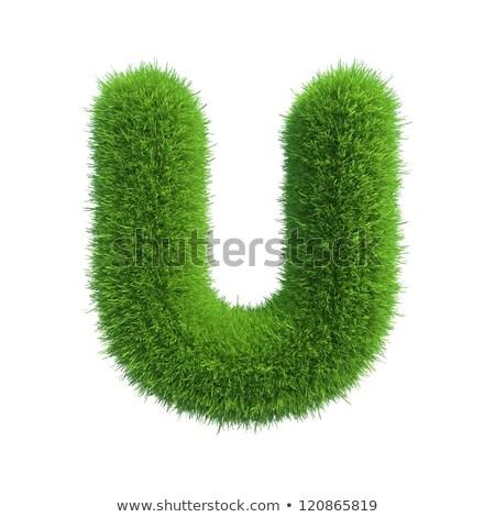 Grass font Letter U 3D Stock photo © djmilic