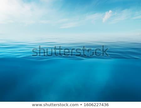 fresh clear water stock photo © lithian