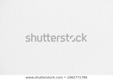 White leather texture closeup stock photo © homydesign