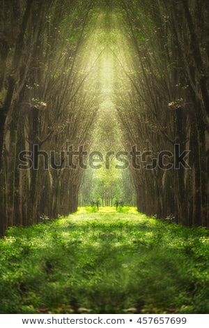 Vertical Nature landscape with tree and flowers Stock photo © WaD