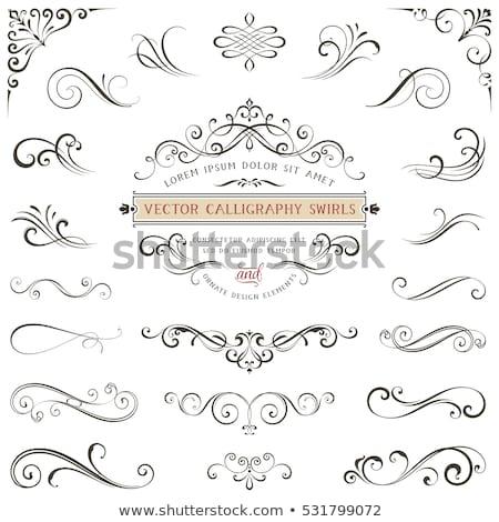 Ornate Scroll Vector Stock photo © oblachko