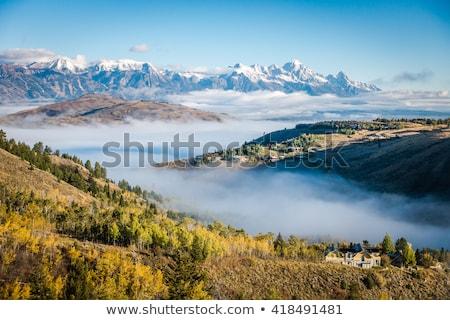 Spadek charakter drzew góry jezioro Zdjęcia stock © emattil