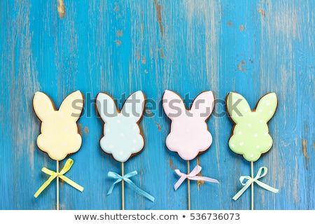 Conejo de Pascua huevo forma cookie ilustración vector Foto stock © orensila