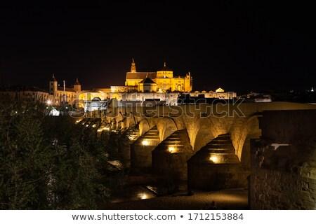 old bridge over river in cordoba Stock photo © compuinfoto