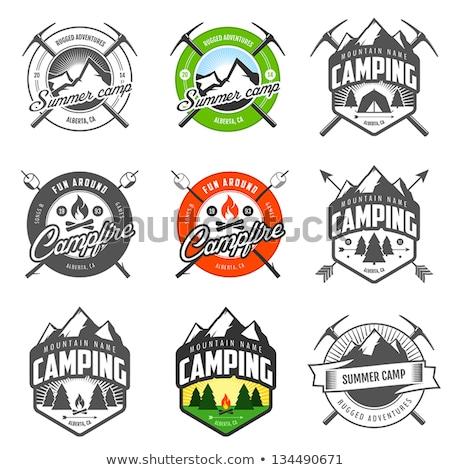 Camping boschi illustrazione foresta bambino panorama Foto d'archivio © colematt