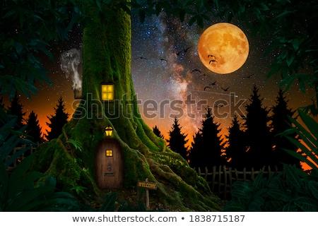 Enchanted tree trunk house Stock photo © colematt