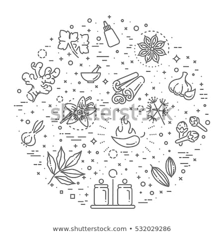 Spices Condiments Banner Illustration Stock photo © lenm