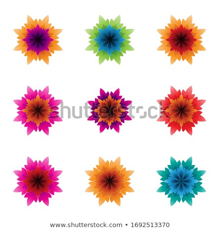 colorful bright flowers with spiky petals vector illustration stock photo © cidepix