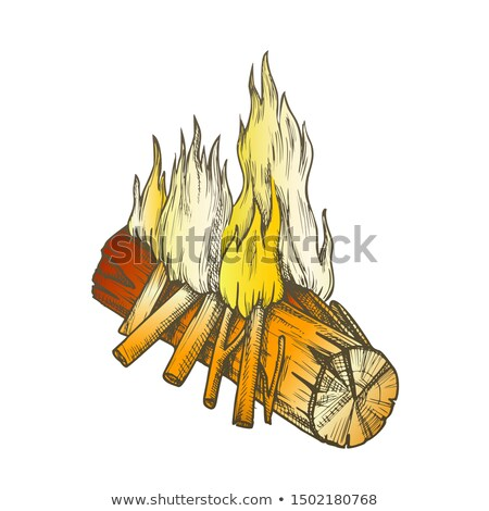 Traditional Burning Wooden Timber Vintage Color Vector Stock photo © pikepicture