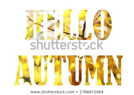 привет · осень · Осенний · сезон · продажи · баннер · осень - Сток-фото © barsrsind