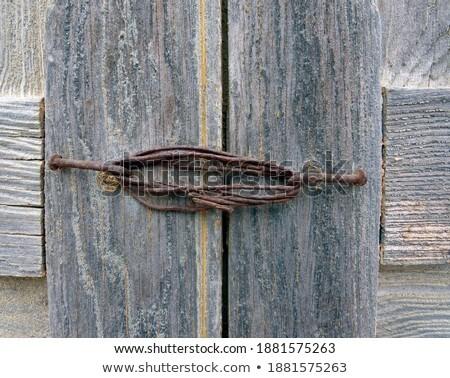 Iron door squirrels Stock photo © bobkeenan