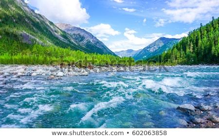 водопада горные реке лес воды дерево Сток-фото © olira