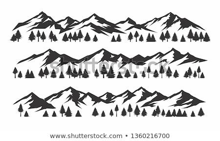 Hegy terjedelem hegyek köd erdő előtér Stock fotó © ldambies