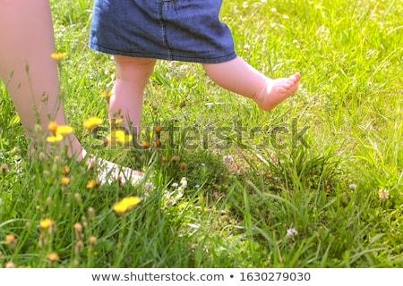 первый · шаги · ребенка · обучения · ходьбы · рано - Сток-фото © phakimata