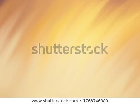 moderne · abstract · ruimte · tekst · ontwerp · achtergrond - stockfoto © hasloo