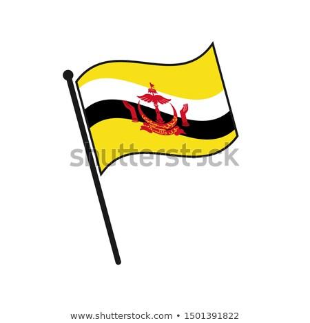 Бруней небольшой флаг карта нация мира Сток-фото © tashatuvango