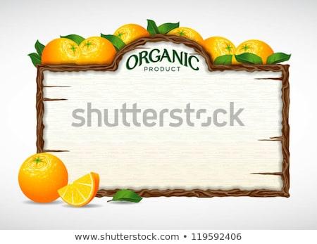 Servieren orange Früchte Tabelle Anordnung Obst orange Stock foto © fuzzbones0
