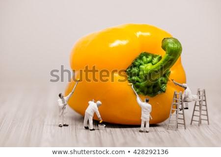 Painters coloring bell pepper. Macro photo Stock photo © Kirill_M