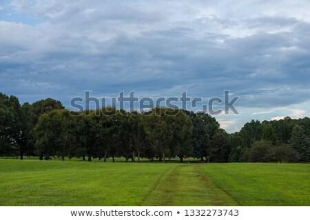 pitoresco · rural · panorama · alto - foto stock © tracer