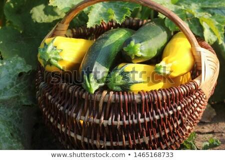 Cesta verde amarillo calabacín alimentos naturaleza Foto stock © IS2