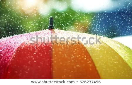 Rainning umbella Stock photo © zzve