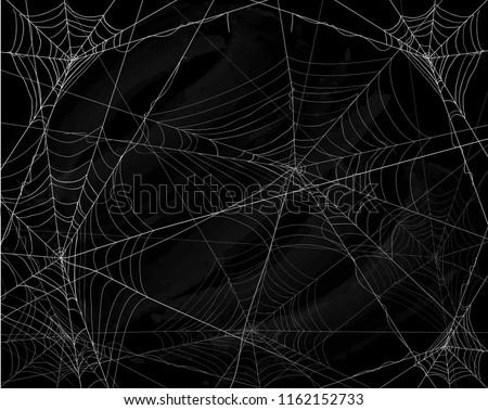 spinnenweb · condensatie · ochtend · abstract · ontwerp · schoonheid - stockfoto © jonnysek