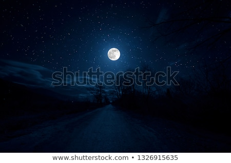 Night moon through the branches of trees stock photo © shihina
