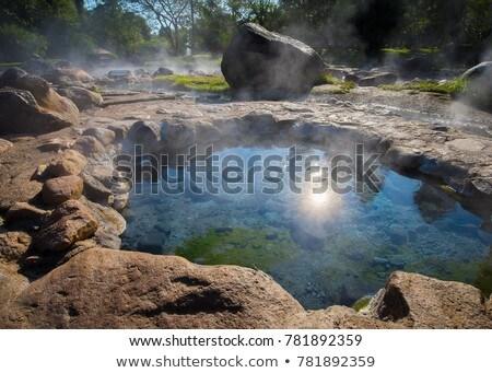 Artesian Spring Stock photo © pancaketom