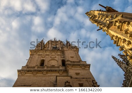 Stone Steeple New Salamanca Cathedral Spain Stock photo © billperry