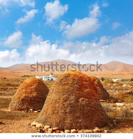 Haystack or straw storage pajero Fuerteventura Stock photo © lunamarina