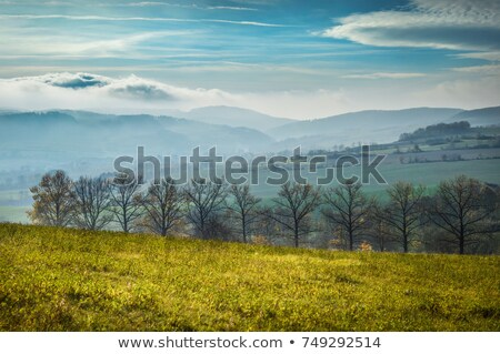 View on mountains in Lower Silesia Stock photo © Massonforstock