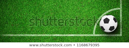 Black and white football against close up view of astro turf Stock photo © wavebreak_media