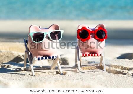 Dois rosa óculos de sol convés cadeira praia Foto stock © AndreyPopov