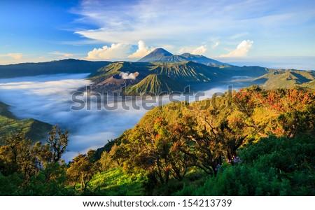 Wulkan parku jawa wyspa Indonezja jeden Zdjęcia stock © galitskaya