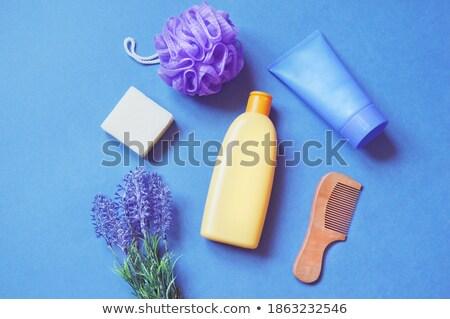 Blue hair brush Stock photo © photography33
