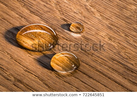 wood in water Stock photo © leungchopan