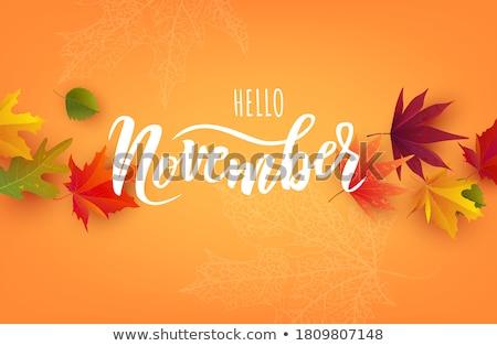 November Typography Stock photo © maxmitzu