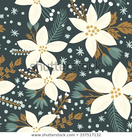 Spring star flower Stock photo © varts