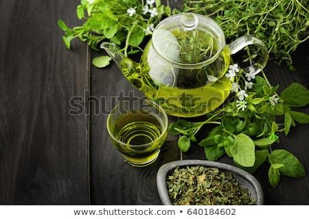 Yeşil çay fincanı fincan tabağı yalıtılmış beyaz doğa Stok fotoğraf © vapi